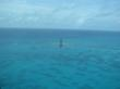 In the sunny Florida Keys