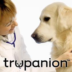 gI 78009 trupanion golden vet Trupanion Announces Additions to Its Pet Insurance Coverage