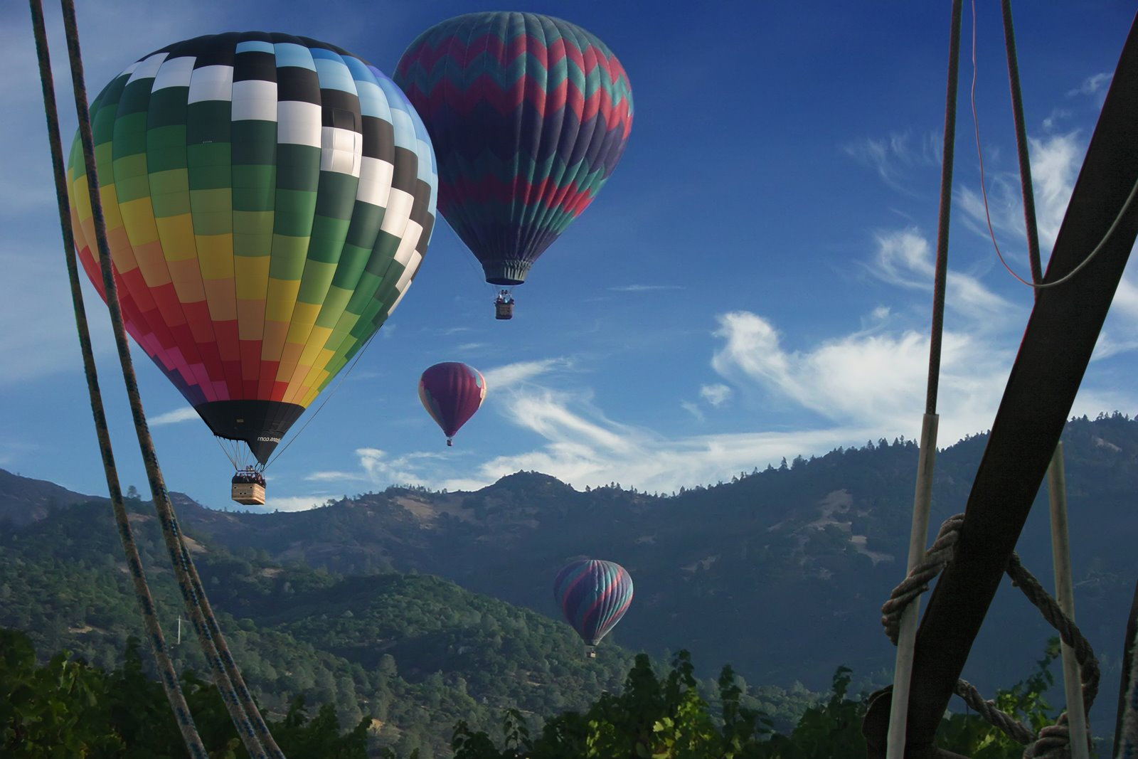 Napa Sightseeing Tour Company, Calistoga Balloons Announces New