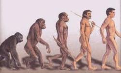 Homo sapiens @ EurekaMag.com