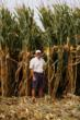 Hula Includes Stoller Technology in Corn Crop Management Program That...