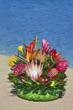 Fresh Protea in Woven Palm Basket Alii Flowers