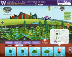 Facebook, Facebook game, video game, social game, University of Washington, Center for Serious Play