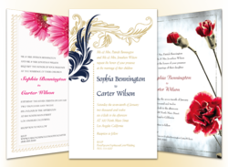 gI 72510 three free invitations Vendors in Indiana, Texas, Arizona, Florida, New York and California to be Featured on the PartyPOP.com Online Network