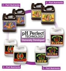 pH Perfect Technology