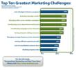 Top Ten Marketing Challenges, per Intelisent/The Relevancy Group Study