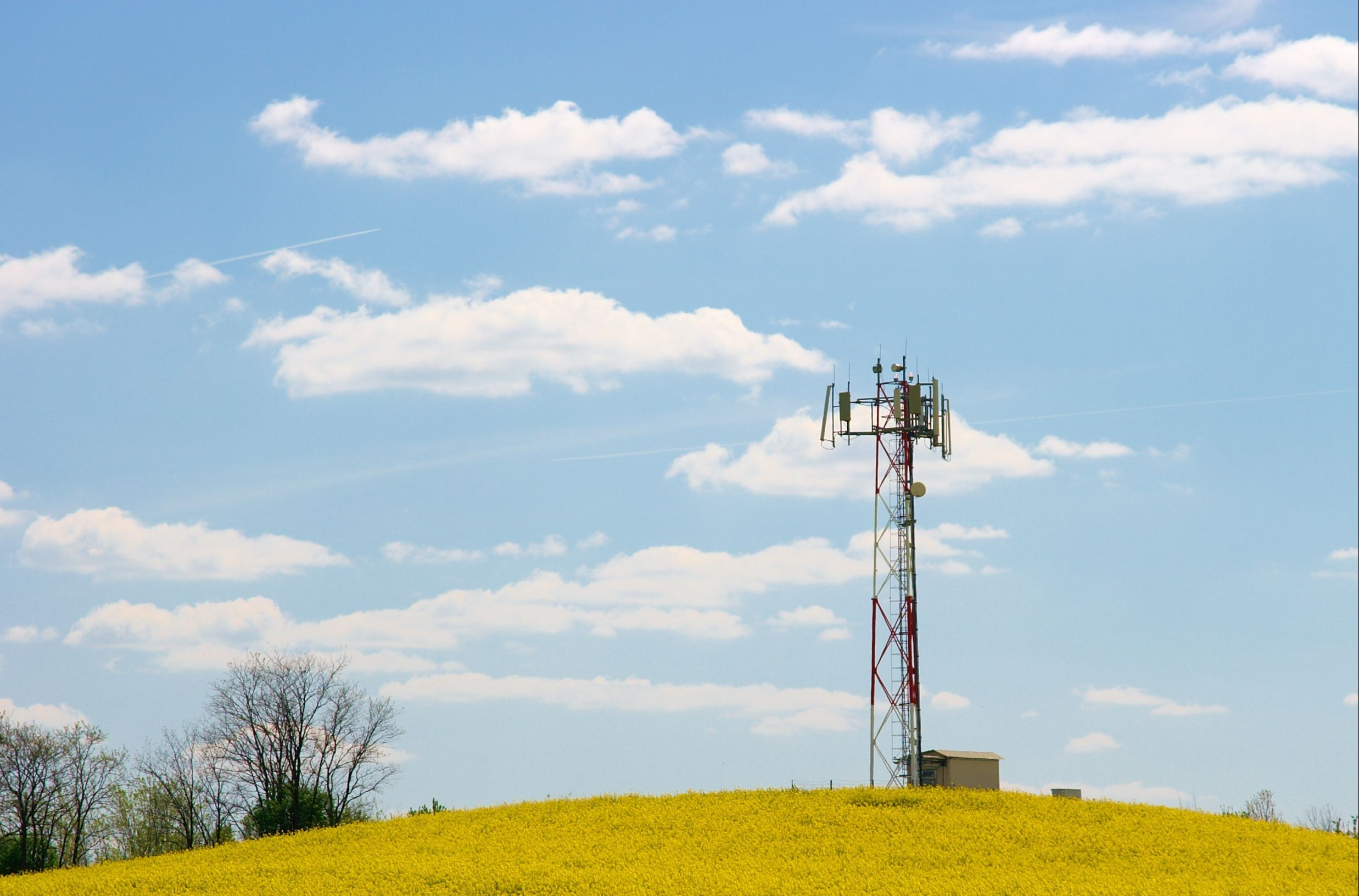 Vertical Consultants Obtains Win Fall Cell Tower Rent