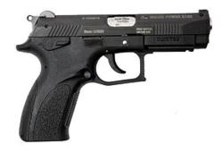 Concealed Handguns AbsoluteRights.com