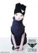 """Smeagol snuggles up in the """"Beatnik Turtleneck"""" as well as modeling the Sphynx Cat Wear Beanie.  Photo: Christopher Voelker © 2012"""