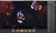 CameraBag 2 Floral Screenshot