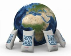 """37 Food Items Sold Out After A Crisis"" eBook"