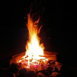 How To Build A Fire For Survival AbsoluteRights.com