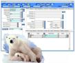 Visual ERP.net Polar Bear