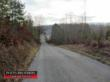 PROPERTY 101 5.15 +/- Acres on County Road 226 in McMinn County, TN