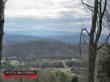 PROPERTY 105 -  790 +/-Acres on Reagan Valley Road in Monroe County, TN