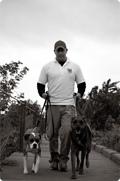 Best Dog Trainers Rochester Ny