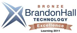 Brandon Hall Bronze Award
