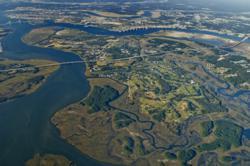 Daniel Island Aerial