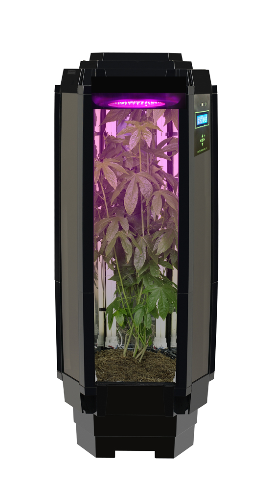 Pin Grow Box on Pinterest
