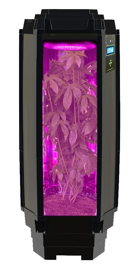 Indoor Growing Phototron Gives 5 Healthy Reasons To Join