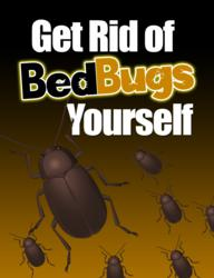 get rid of bed bugs yourself