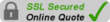 Leased Line Secure SSL Online Quote
