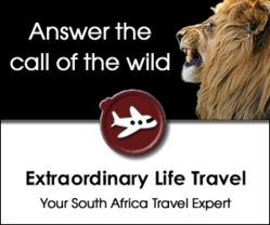 Tastes of South Africa food, wine and safari experience