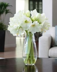 amaryllis-elegance-silk-flower-arrangement