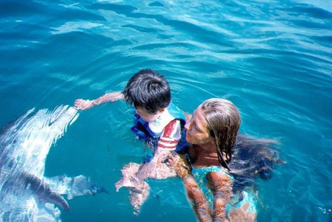 Best Dolphins Cruises In Panama City Beach Fl
