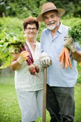 Man and women in the vegetable garden