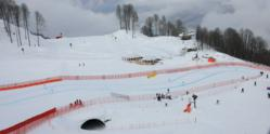 Sochi slopes praised after World Cup action