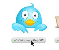1000 Twitter Followers for $17