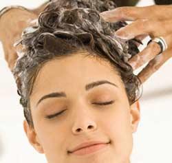Shampoo With Sulfate Free Shampoo