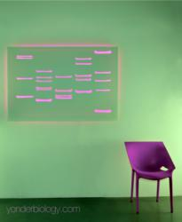 Niteo Neon DNA Art Collection by Yonder