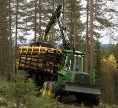 Forestry @ ScienceAlerts.com