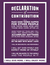 Declaration of Contribution Sam Parker