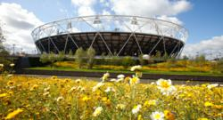 Marigolds, wildflowers and Olympic Rings to flower across the UK as green-fingered Brits 'Garden for the Games'