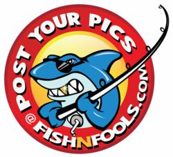 Fishnfools.com - A Social Network For The Fishing Community