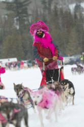 Mush for a Cure a Sled Dog FUNdraiser on Minnesota's Gunflint Trail