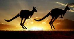 Natural Life Australia