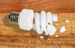 Cracked CFL Light Bulb