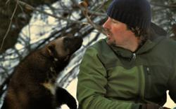 "Casey gets face-to-face with a captive wolverine for the new episode ""Wolverine King"" on Nat Geo WILD."
