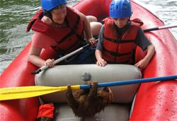 Sloth in the boat! Costa Rica family camp.