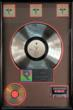 Motley Crue - Dr. Feelgood RIAA Record Award