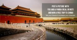 PandaTrail Facebook Contest