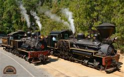 Engines 10 and 15 of the Yosemite Mountain Sugar Pine Railroad are authentic, nearly century old Shay locomotives that give tours through the Sierra National Forest just a few miles south of Yosemite National Park