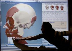 Graduate student Stacy Jorgensen demonstrates Boise State University's new interactive, virtual anatomy learning tools from Primal Pictures.  (photo credit: Boise State University)