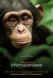Disneynature celebrates the April 20, 2012, theatrical release of the incredible new True-Life Adventure, CHIMPANZEE