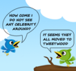 Tweetwood Launches Mobile App for Fans to Track Celebrities on Twitter