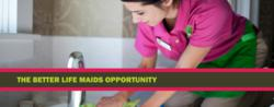 Better Life Maids Green Cleaning Franchise & Low Cost Franchise Opportunity